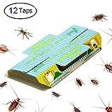 Trapro - Trappola adesiva per scarafaggi, con esca, non tossica e ecologica,12pezzi