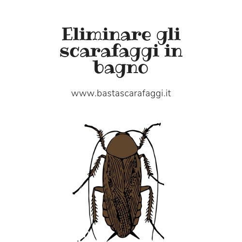 Eliminare gli scarafaggi in bagno