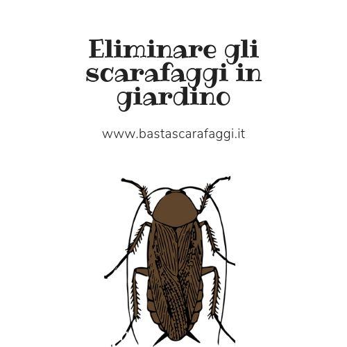 Eliminare gli scarafaggi in giardino